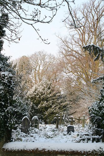snowfall Southampton Old Cemetery courtesy FoSOC